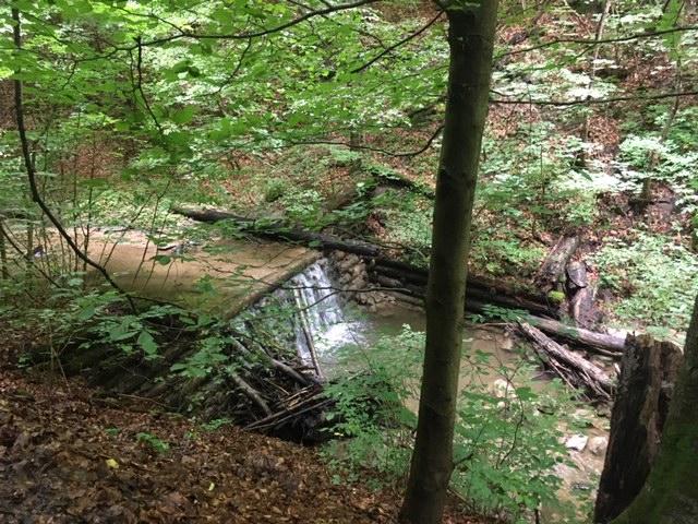 kleiner Wasserfall Hagenbach Klamm