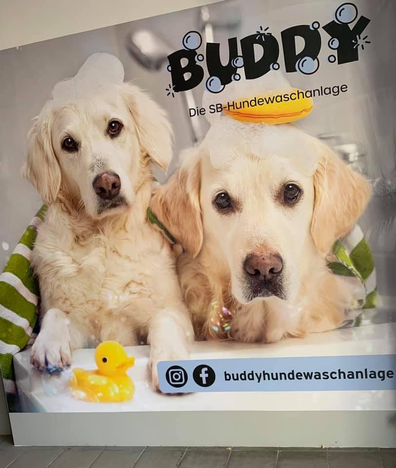 Buddy-Hundewaschanlage
