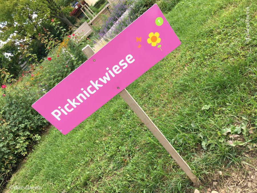 Picknickwiese_Tulln
